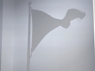 NOT EVERY FLAG HAS THE SAME SHADOW