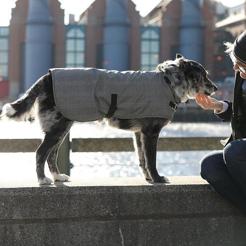 Cleverpup Waterproof Dog Coat by Cleverhood