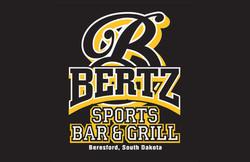 WMPort-Bertz2