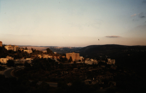 Overlooking the hills of Birzeit. This was the view from my little shared apartment balcony. We often saw families congregate on hillsides to scream love at each since the roads among houses were closed down due to israeli miliary checkpoints.