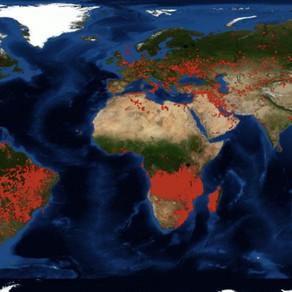 Vie sur Terre : des Droits de l'Homme aux Devoirs des humains envers le Vivant !