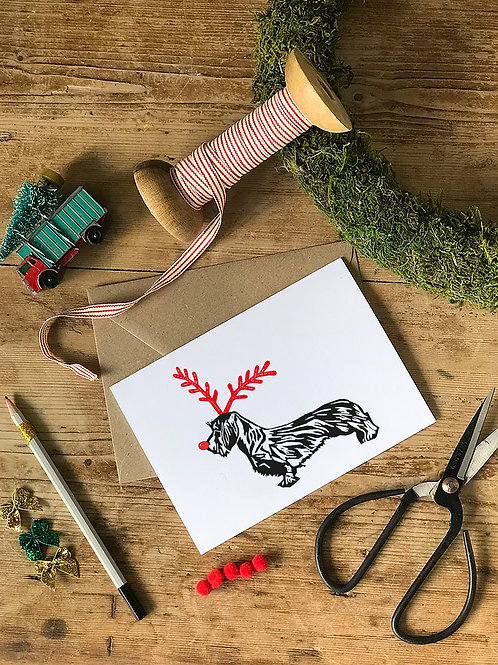 Wire-haired Dachshund Christmas Card