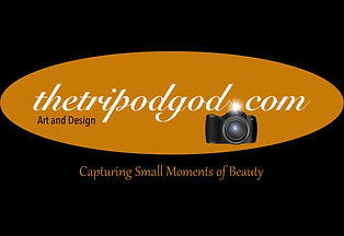 photohooks-Logo-Flash%402x_edited.jpg