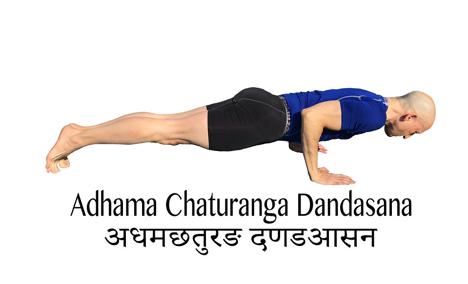 Adhama%20Chaturanga%202_edited.jpg