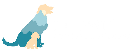 Ludwig-Colorado-Golden_Logo_H-White.png
