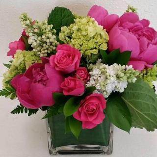 pink roses design