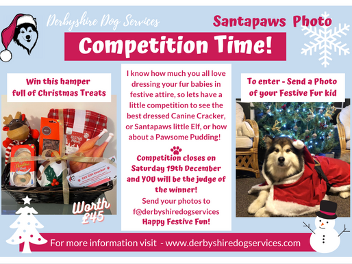 CHRISTMAS PHOTO      COMPETITION TIME!