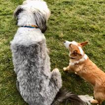Reggie and friend