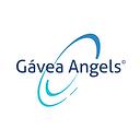 É uma logo escrita Gávea Angels com linhas azuis em volta