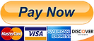 paypal-pay-now-button-png-15.png