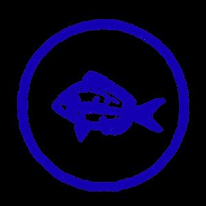 fish_edited.png