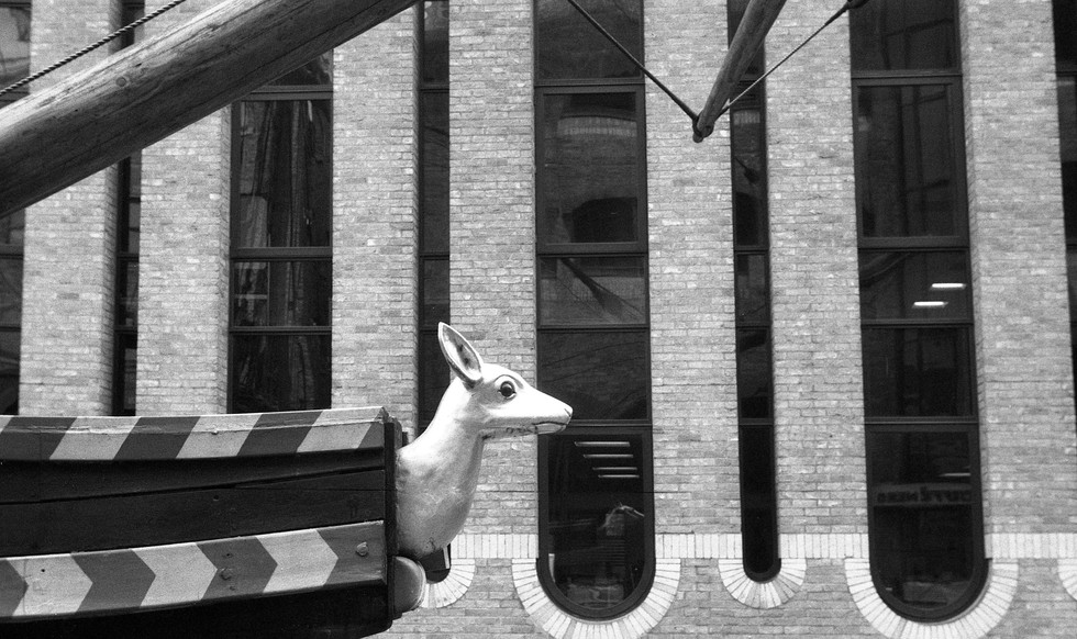 Leica III 192379 Foma200001.jpg