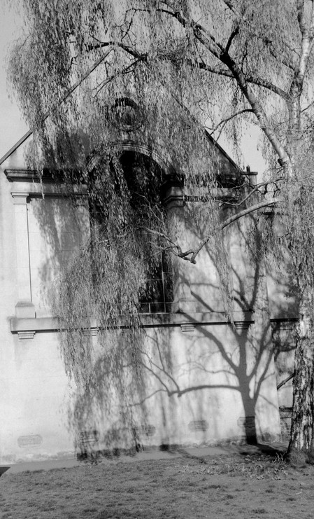 Leica III 192379 Foma200013.jpg