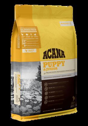 Puppy & Junior            Dry Dog Food