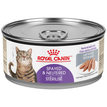 Spayed/Neutered Loaf in Sauce Canned Cat Food