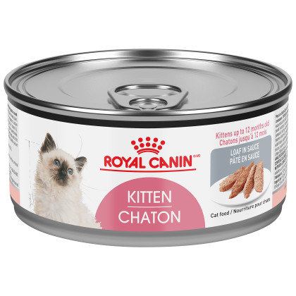 Kitten Loaf In Sauce Canned Cat Food