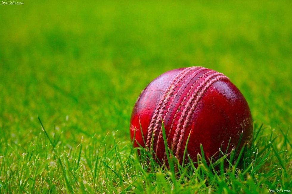 Cricket ball.jpg