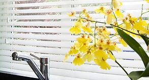 venetian+blinds+3.jpg