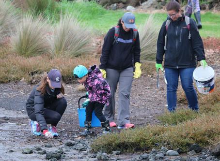 Mangere Beach Clean Up