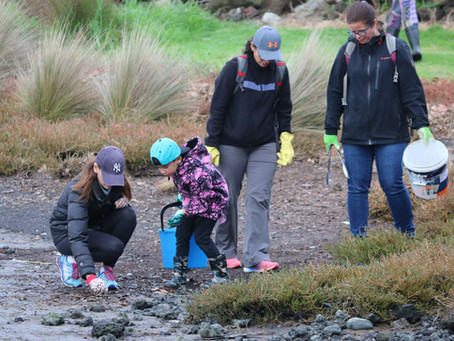 Mangere Beach Clean Up