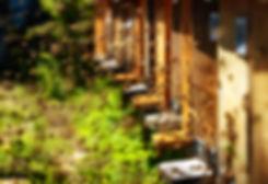 shutterstock_428668240.jpg