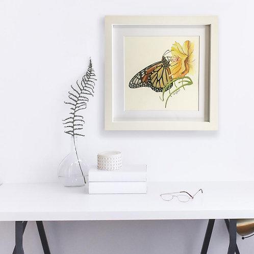 Monarch Butterfly Study