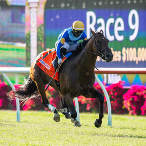 Hit The Road scores impressively on opening day at Del Mar