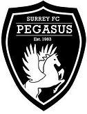 Surrey FC Logo