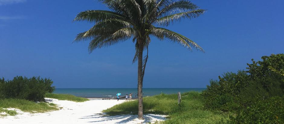 5 reasons to visit El Cuyo Yucatan