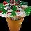 Thumbnail: Christmas on Sticks