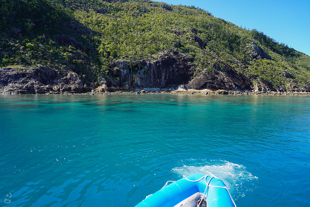 Day Trips in the Whitsundays snorkeling