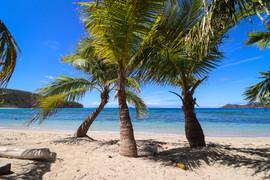 Fiji2018-3804.jpg