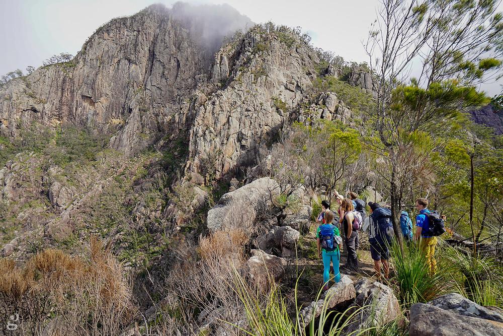 Logans Ridge Mount Barney National Park
