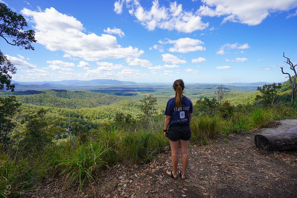 overlook near Wallaman Falls