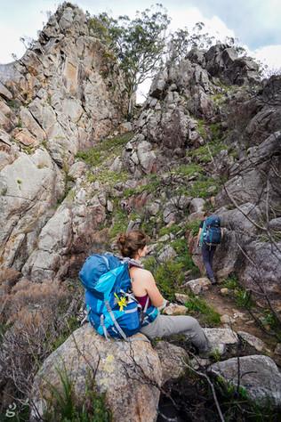 Logans-Ridge-hike-Mount-Barney-01465.jpg