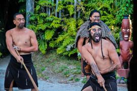 NZ2014-49.jpg