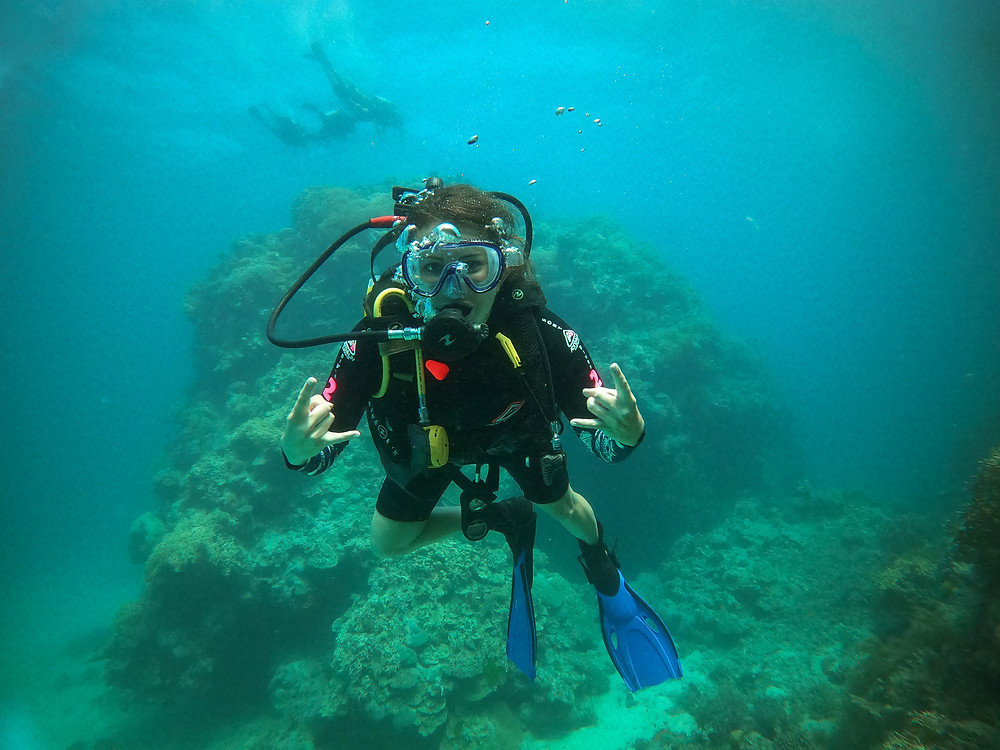 best diving day tour from Cairns GBR