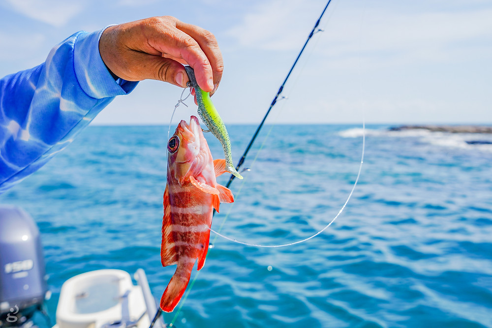 Groote Eylandt fishing charter