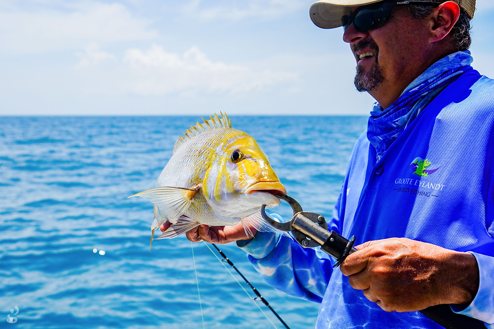fishing charter yellow snapper Groote Eylandt Northern Territory
