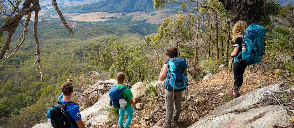 Hiking Logan's Ridge, Mount Barney National Park