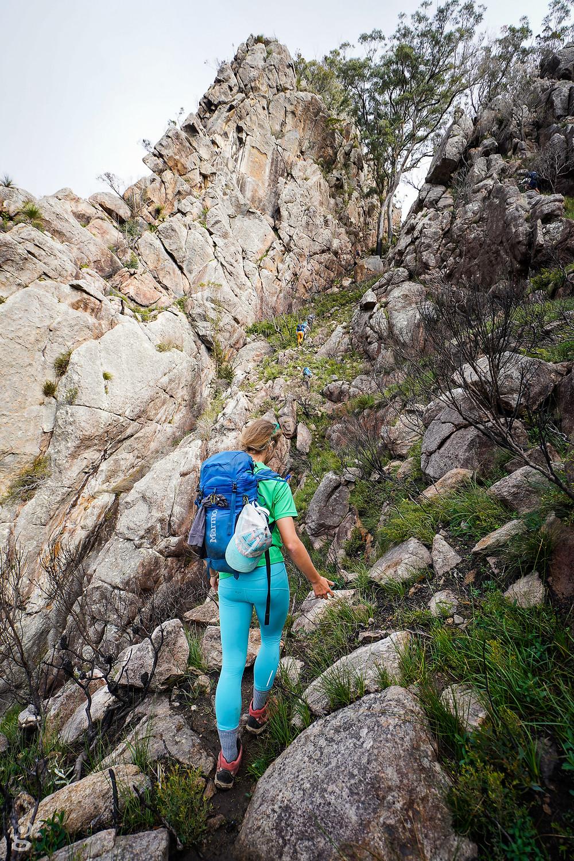 Mount Barney hiking Logans Ridge