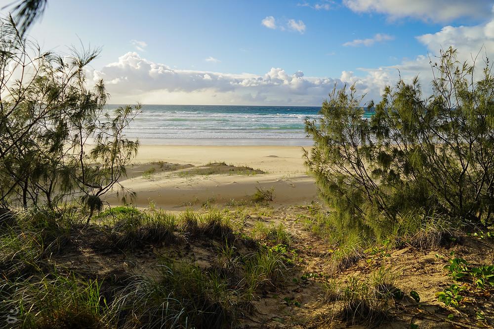 Sunrise beach camping Fraser Island