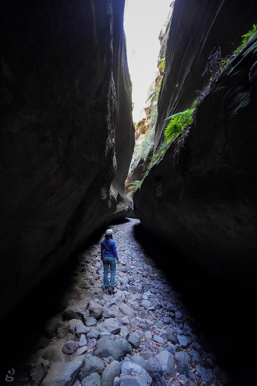 Boowinda Gorge hiking in Carnarvon Gorge