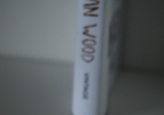 DSC_0006.MOV