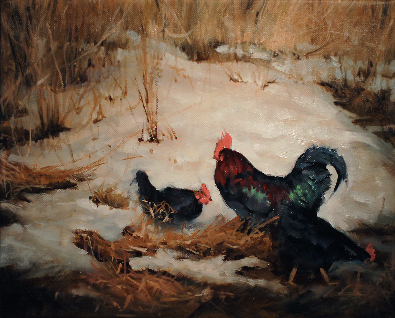 Winter rooster