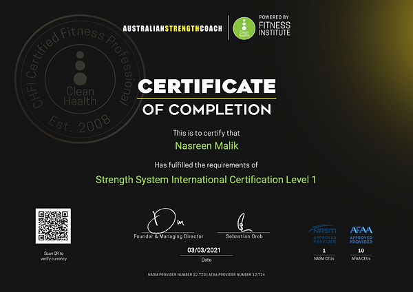 CHFI STRENGHT SYSTEM INTERNATIONAL - PDF
