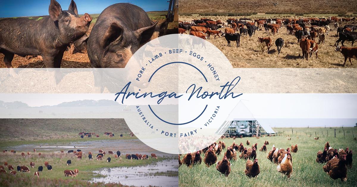 Aringa North