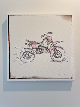 6.Mike Motorbike
