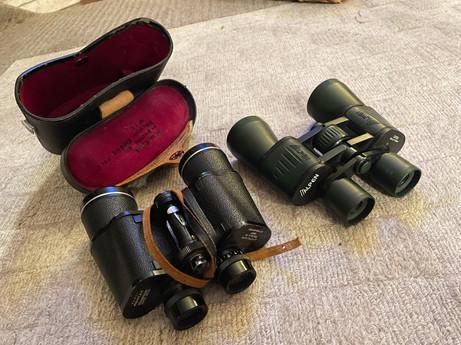 Binoculars x 10