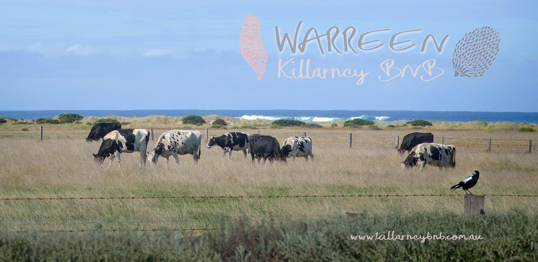 Warreen | Killarney BNB